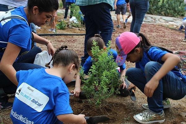 12 - Instalan jardín para polinizadores en el Centro Ecológico de Sonora