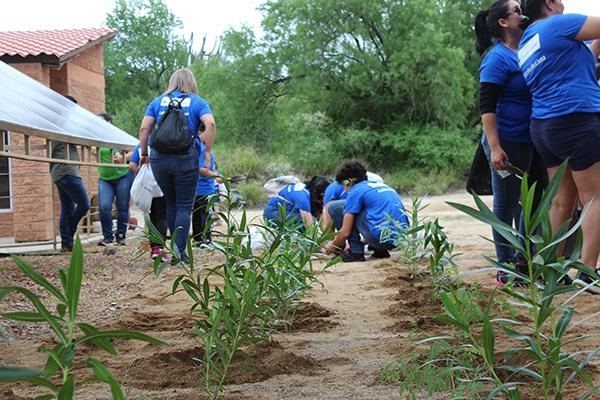 4 - Instalan jardín para polinizadores en el Centro Ecológico de Sonora