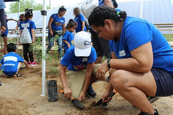 7 - Instalan jardín para polinizadores en el Centro Ecológico de Sonora